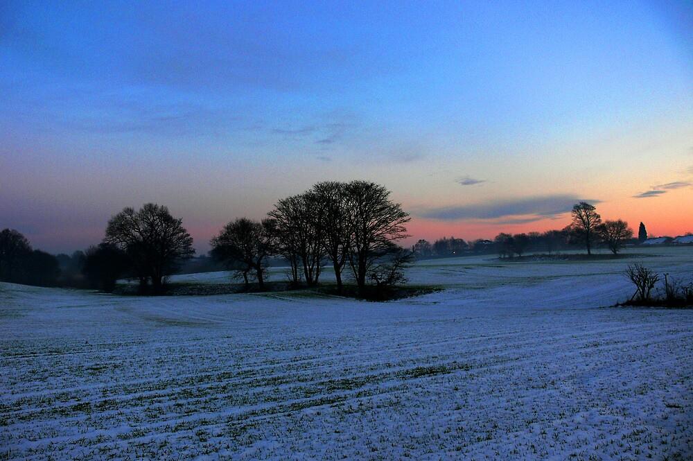 In Winters Grip by Carol Dawes