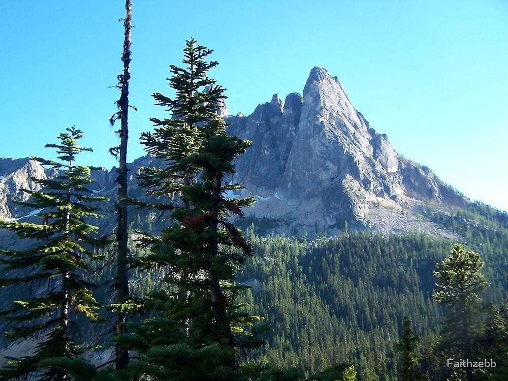 WA Mts by Faithzebb