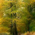 Forest Glow by Ann Garrett