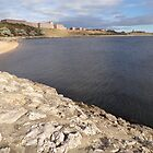 Tynemouth at the Mouth of the Tyne by Jackie Wilson