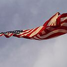 Old Glory by Diana Forgione