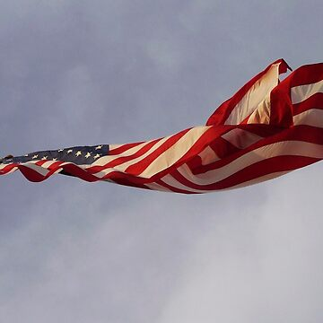 Old Glory by Diana16