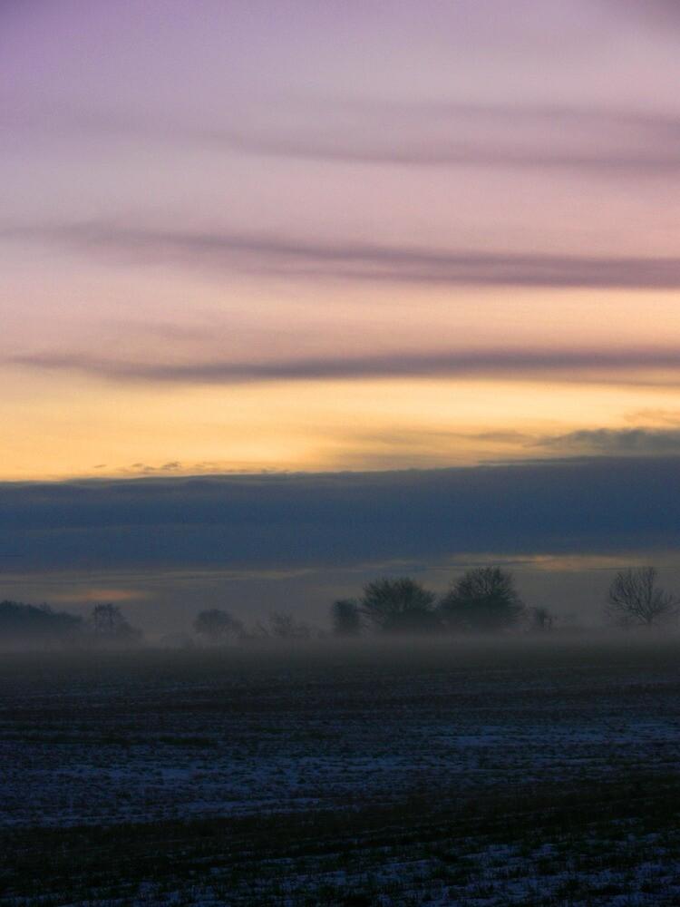 Misty Winter Sunset by Carol Dawes