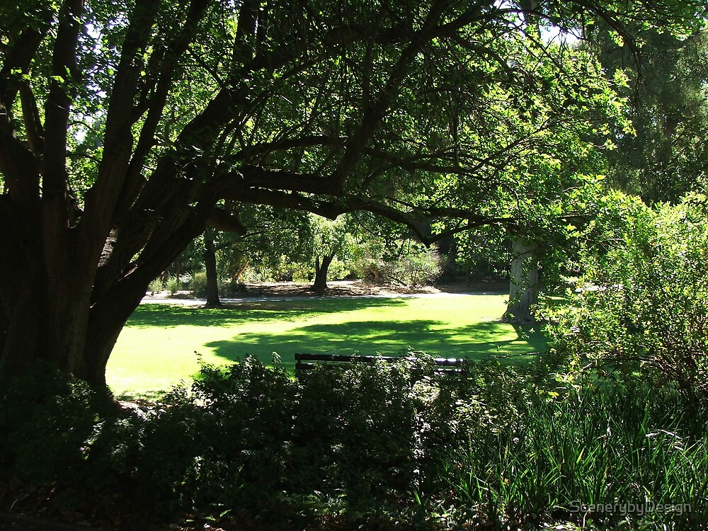 Botanic Gardens 4 by ScenerybyDesign