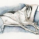 Sleeping Greyhound by Charlotte Yealey