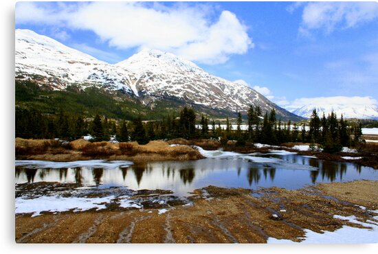 Snow-capped Mountains in Alaska by Laurel Talabere