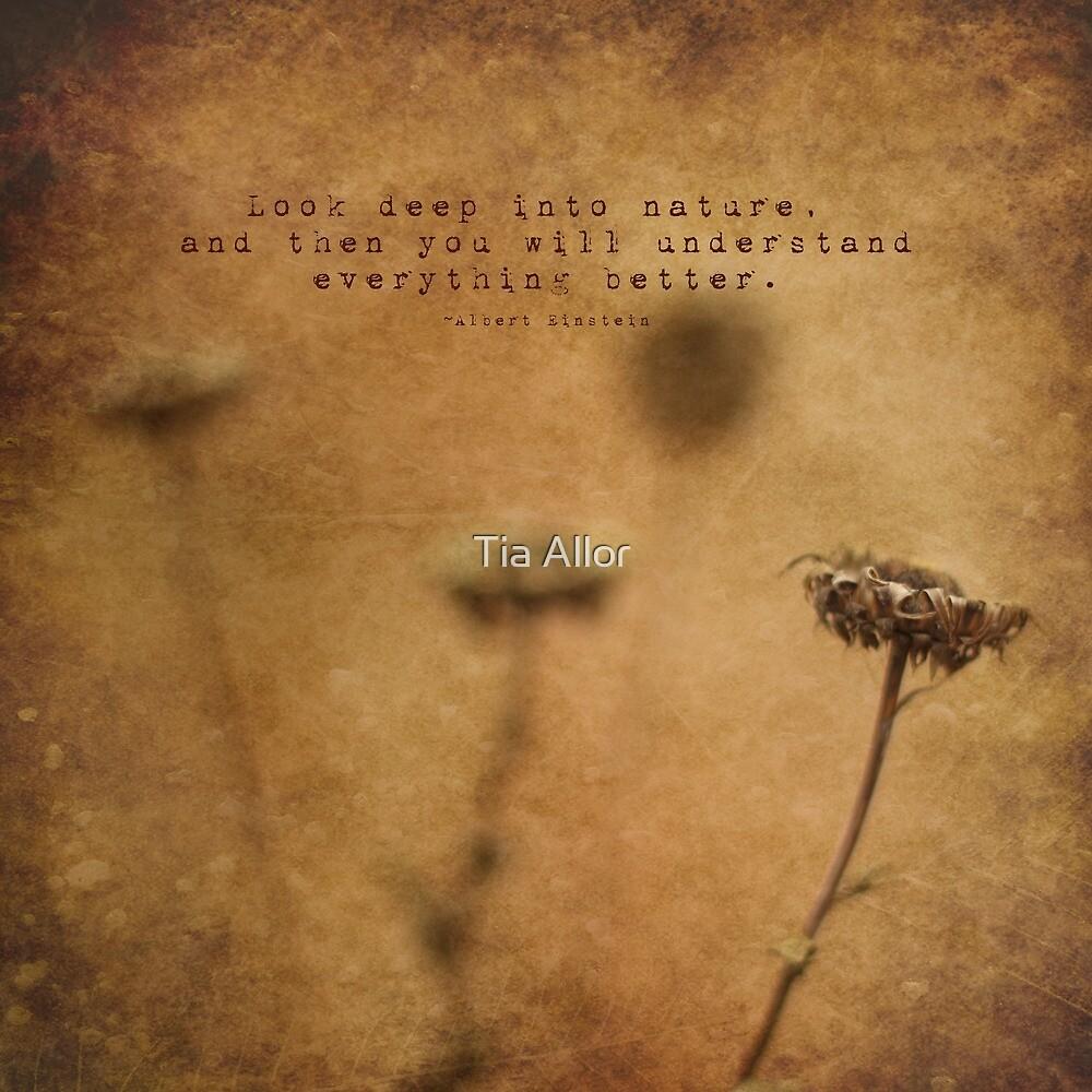Look Deep by Tia Bailey
