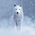 Majestic white wolf in snow by 3DArtRebel
