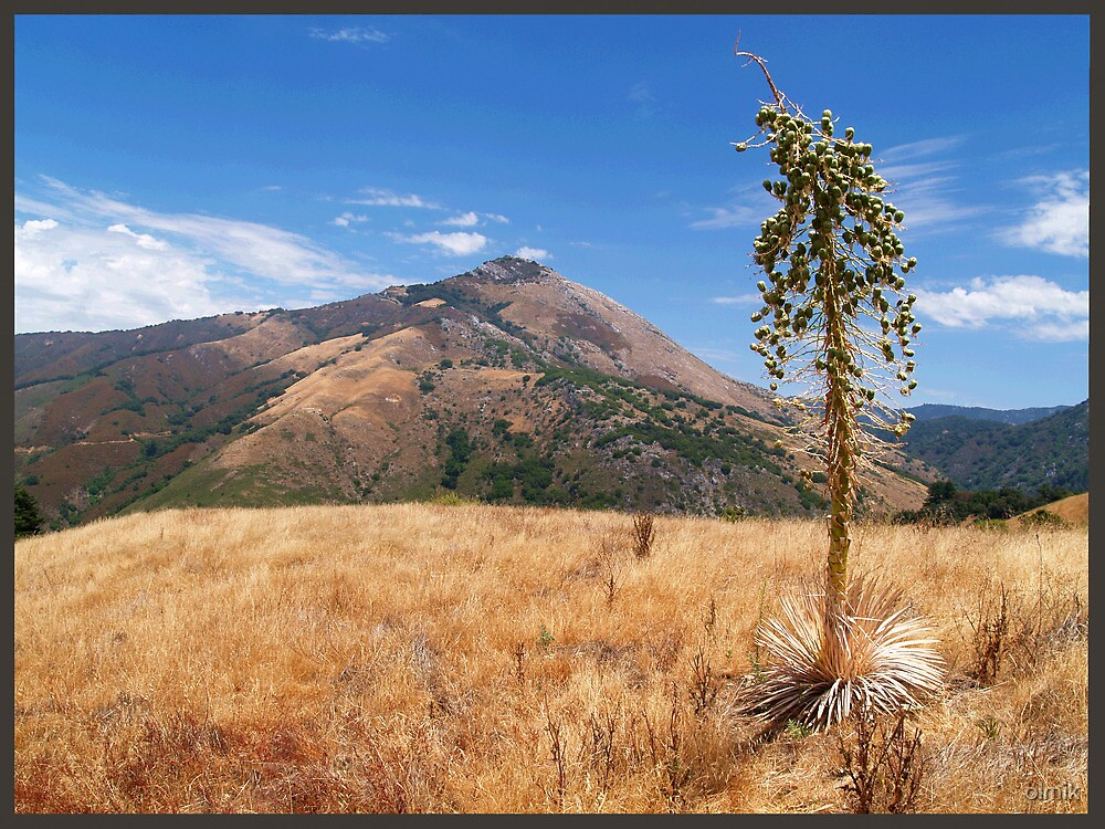 On the Way to Pico Blanco by olmik
