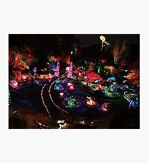 Night in the Sunken Garden(2) Photographic Print
