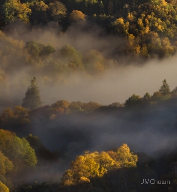 Autumn trees in morning mist, Grasmere by JMChown