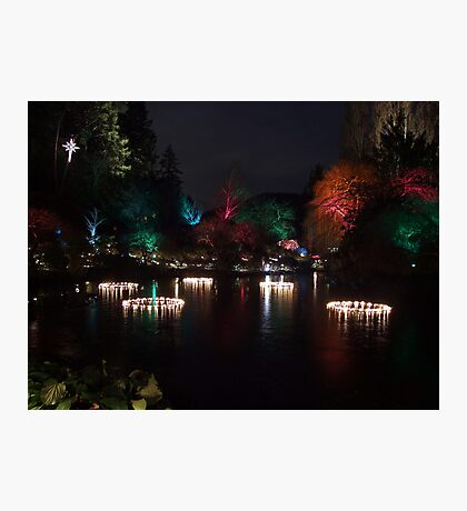 Night in the Sunken Garden (5) Photographic Print