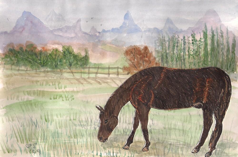 Dark horse by GEORGE SANDERSON