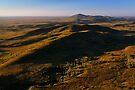 Mt Balfour & The Norfolk Range, Tarkine Landscape, NW Tasmania by Garth Smith