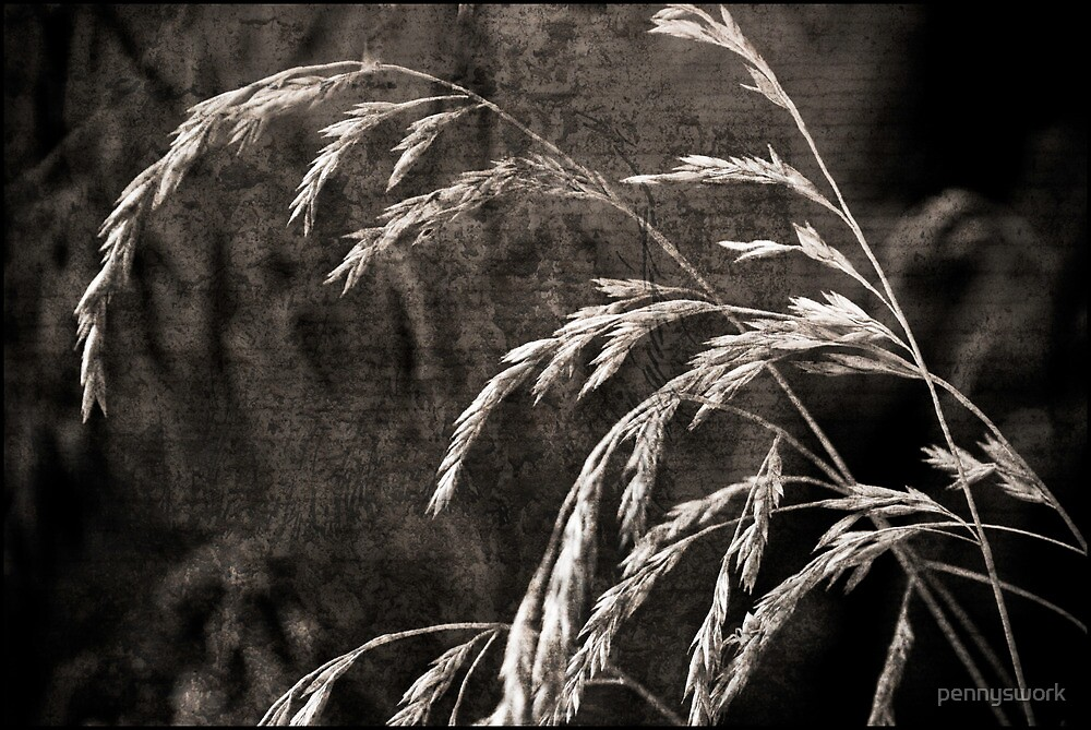 Grass with Texture by pennyswork