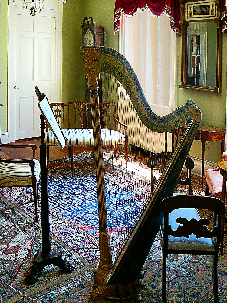 Harp in Living Room by Susan Savad