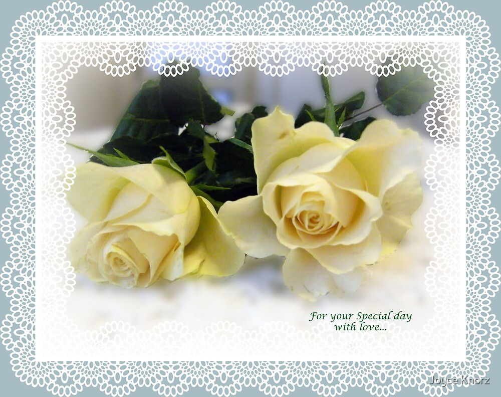 white lace card by Joyce Knorz