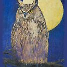 The Owl and the Moon by Susan Fox