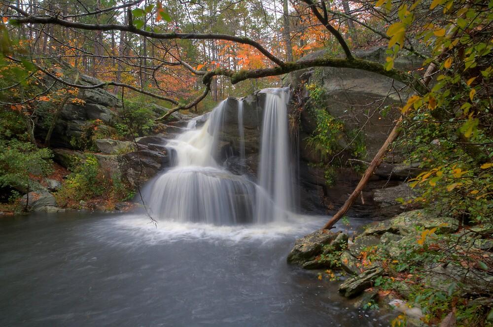 Cheaha Falls  by Michael  Callahan
