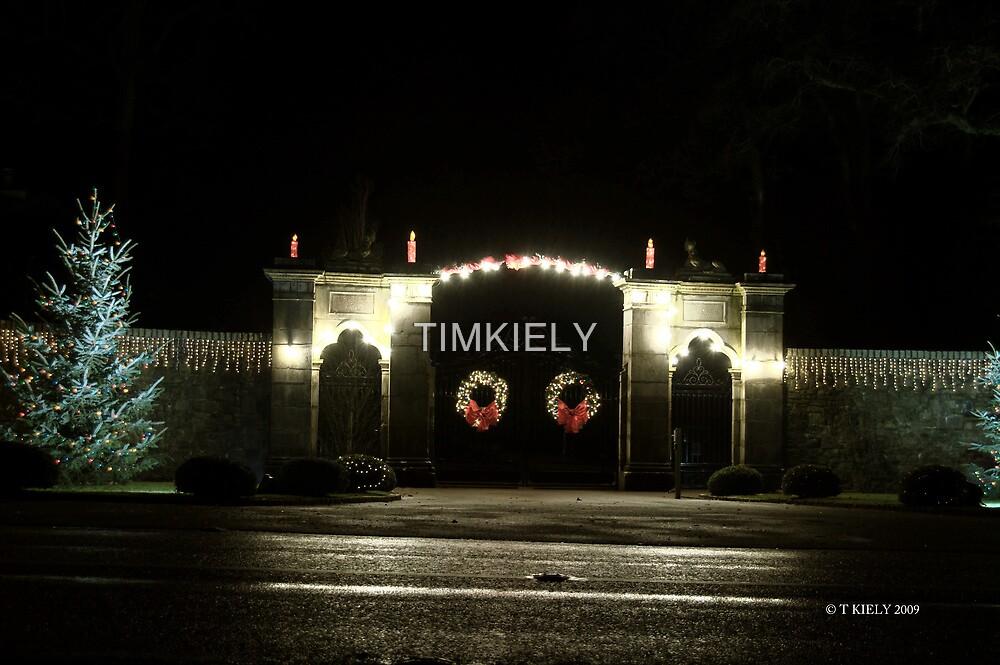 castlehyde by TIMKIELY