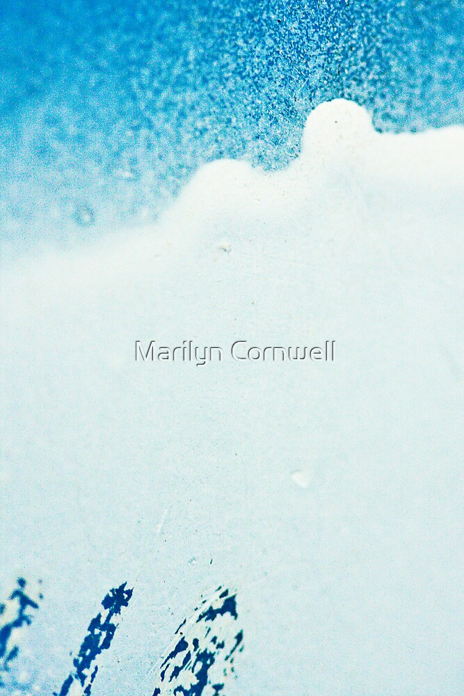 Through the Blizzard by Marilyn Cornwell