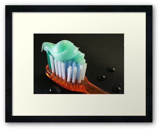 Let's Brush by Lynn  Gibbons