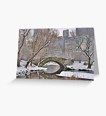 All the Trolls Are In Miami-Gapstow Bridge In Snow  New York City (HDR) Greeting Card