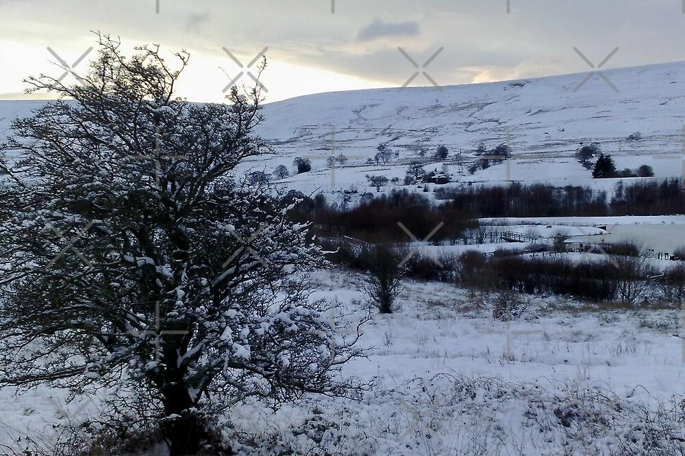 winter view - garnyrerw by sjbaldwin