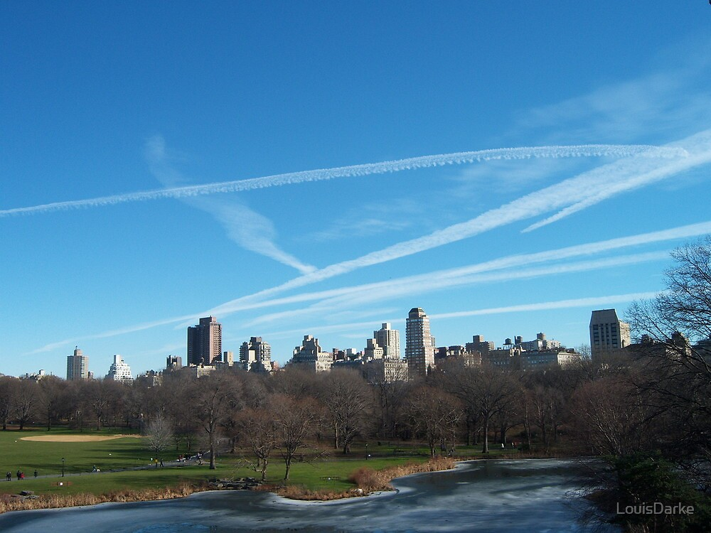 Central Park 2 - NYC by LouisDarke