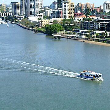 Brisbane river fron the New Farm Cliffs by kllebou