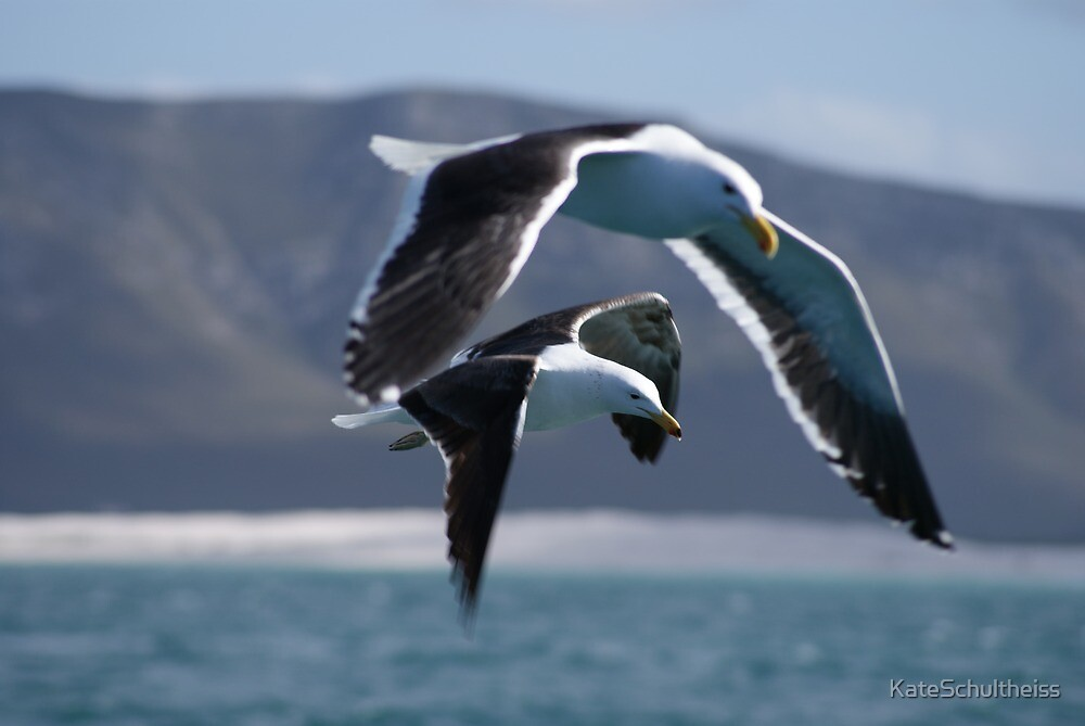 Flying High by KateSchultheiss