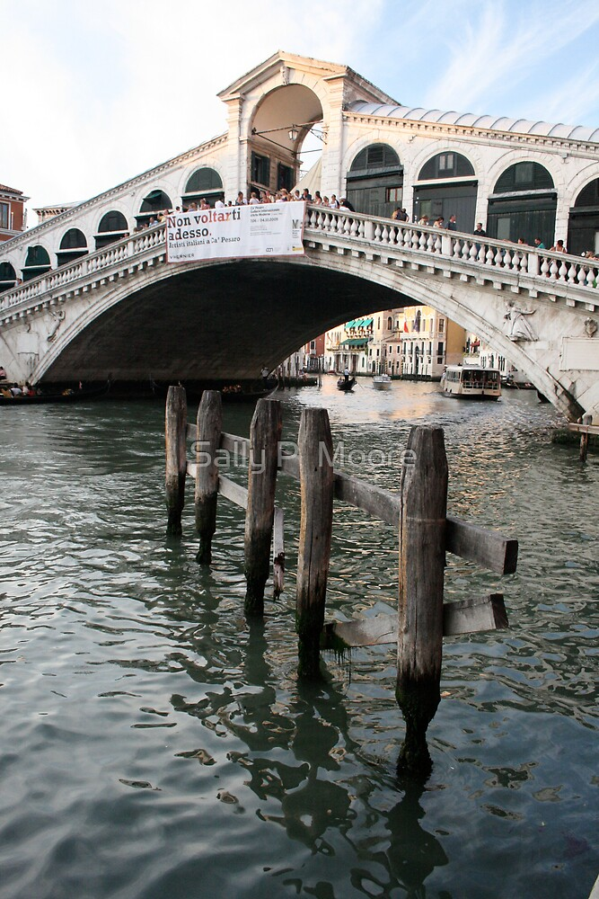 Venice Two by Sally P  Moore