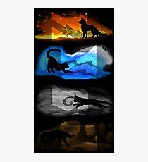 Krieger Katzen: Vier Elemente, vier Clans Fotodruck