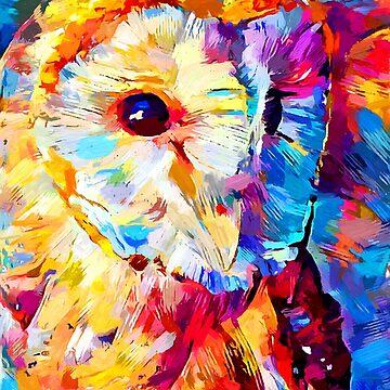 Barn Owl by ChrisButler