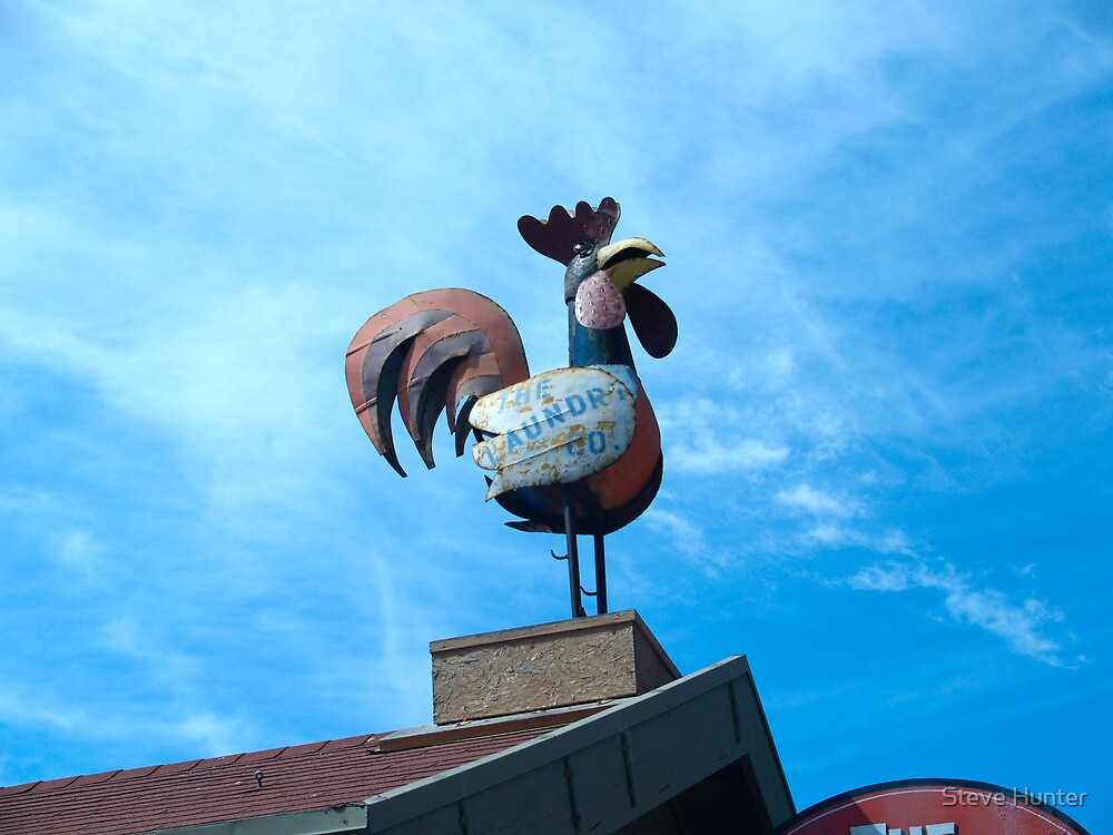 Super Chicken by Steve Hunter