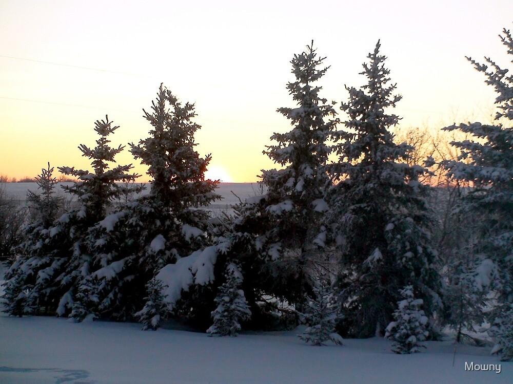 Frosty Sunset by Mowny