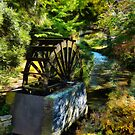 The Replica Waterwheel On Mill Island by PictureNZ