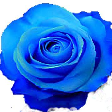 Blue roses by ViviennePoet