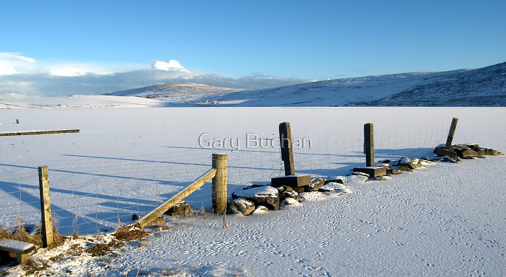 Asta...Frozen In Time by Gary Buchan