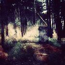 Tür im Wald von AnnArtshock