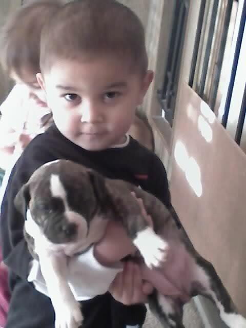 Anthony,and the new puppies by PapasGirl