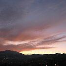 Morning Light 3 - IMG_6404 by Bob Merhebi