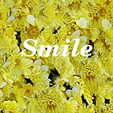 smile by ViviennePoet