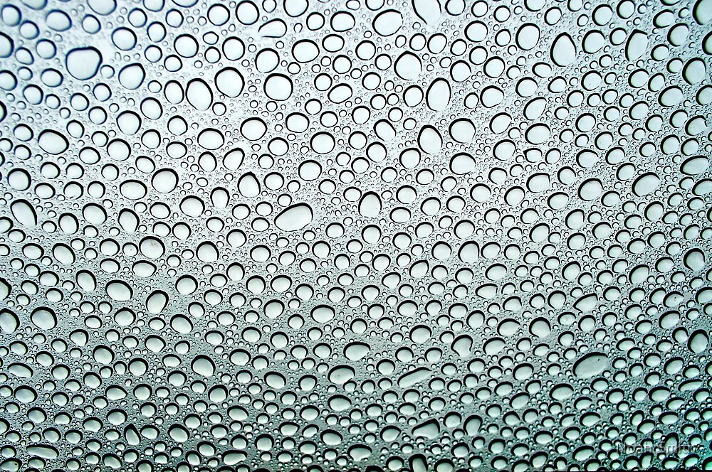 Drops on My Sunroof  by Noah Smith