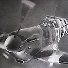 The Fabulous Spitfire by John Reardon
