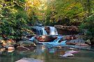 Waterfall On Deckers Creek by Gene Walls