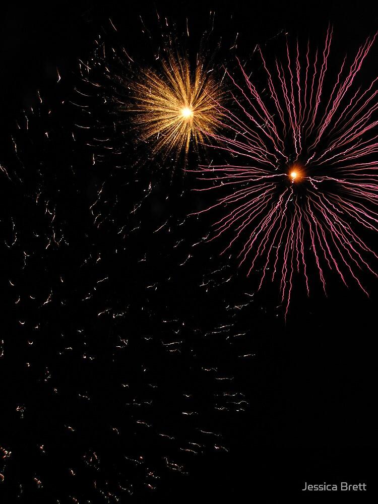 Canberra 2010 Firework Display by Jessica Brett
