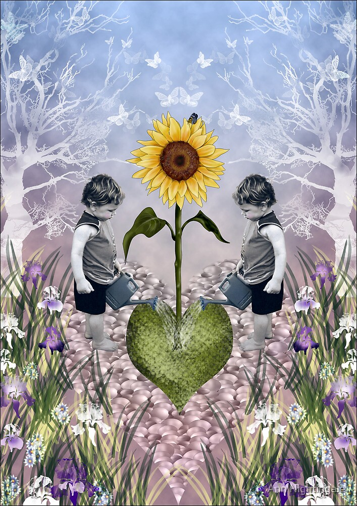 Zak's Garden by Ann Nightingale