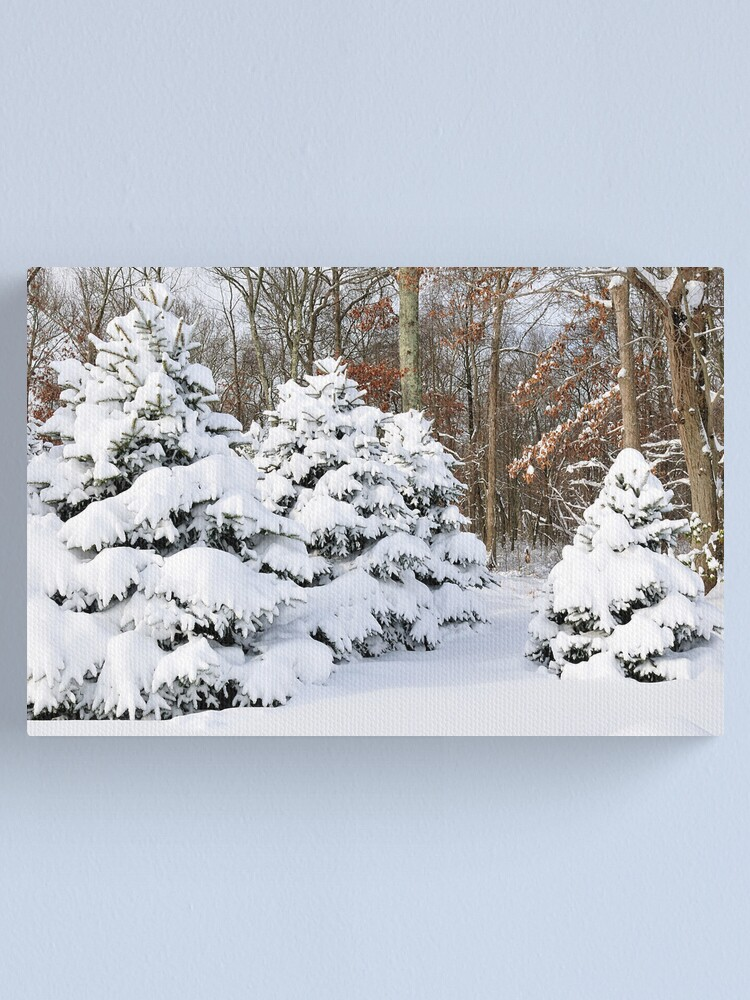 Alternate view of Snowy Pines Canvas Print