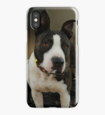 PRECIOUS PITBULL iPhone Case/Skin